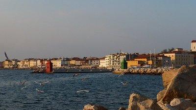 Piran_shoreline.jpg