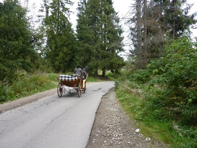 Zakopane_horse_and_cart.jpg
