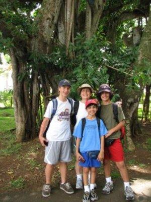 0_family_w..er_tree.jpg