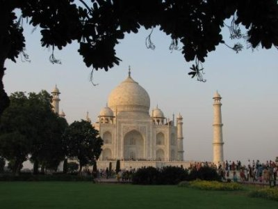 16_Taj_with_leaves.jpg