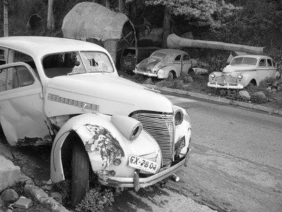Car cemetery
