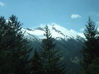 G_mama_vie..he_Alps.jpg