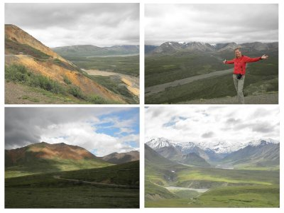 Denali park and polychrome point