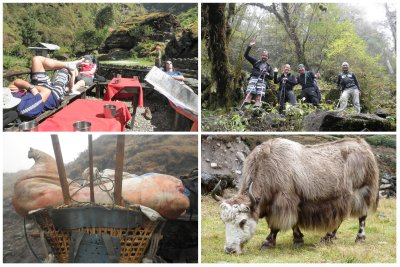 The first day we had lunch in the sun, and it was going to be the last for a week. Meanwhile on our way we would encounter whole pigs, either alive or dead, being transported. The big yaks are rather typical for Nepal