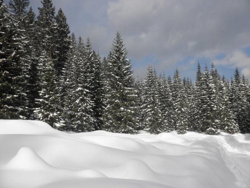 view while skitouring