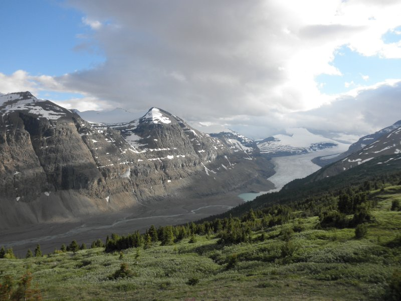 Parker Ridge trail with a view at the Saskatchewan Glacier