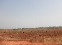 20110101_256a.jpg