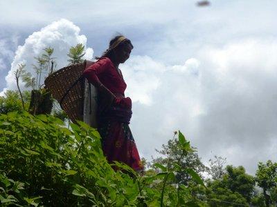 gorkha woman
