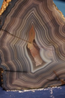 A agate sample in Search: The Sara Stern Gallery.