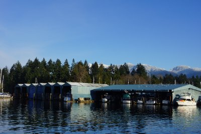 The boat sheds at Coal harbour.