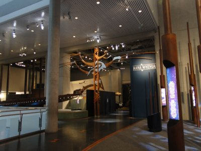Te_Papa_Maori_exhibit.jpg