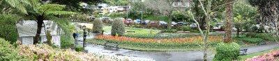Tulip_Garden.jpg