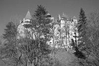 Bran Castelul