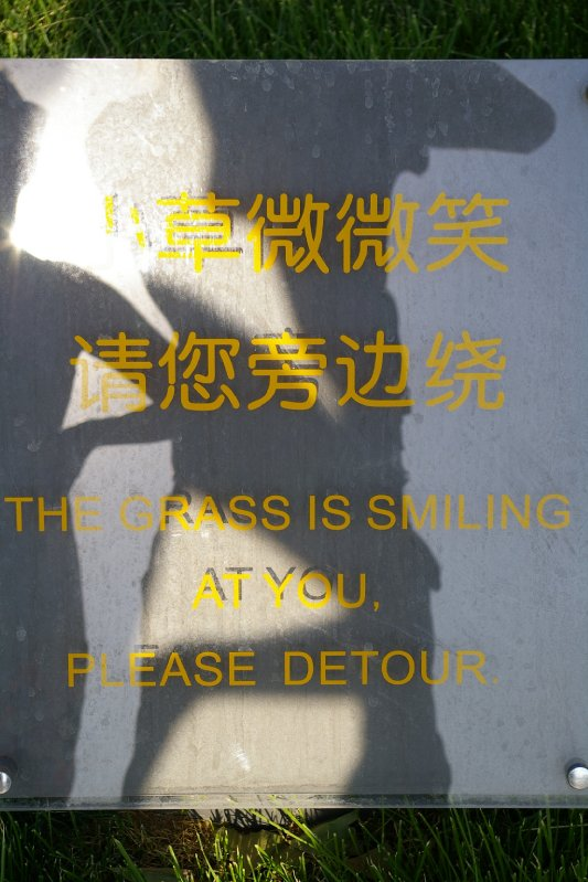 The grass is smilling at you, Please detour! What?!