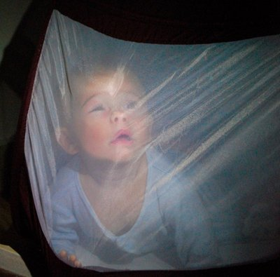 Asher trying to escape the mosquito bed 3