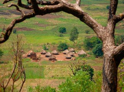 A typical Lugbara village nearby Arua