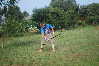 David slashing