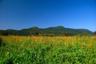 Scenery around Lobone