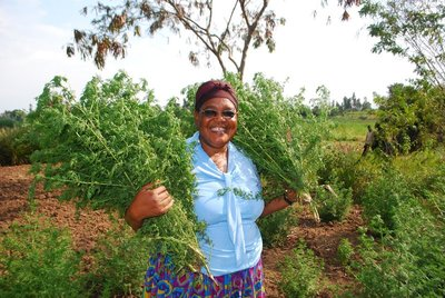 Photo of Rosalia with bunches of Artemesia in Kenya with REAP 2010