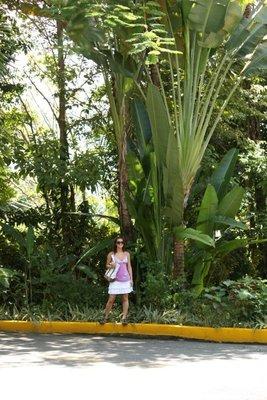 Jessica & Foliage