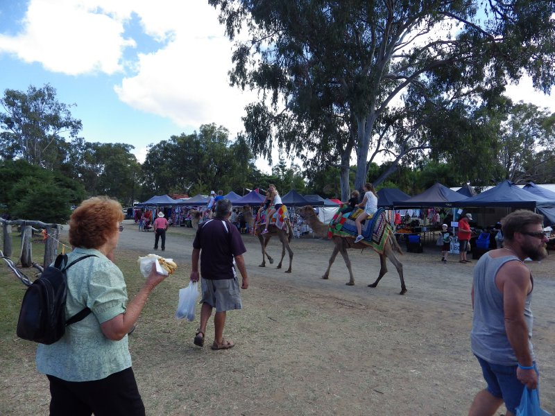 2013 Sep 8 Camel ride at Markets