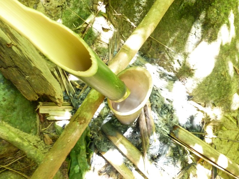 Khao Sok Jungle Bamboo Kettle