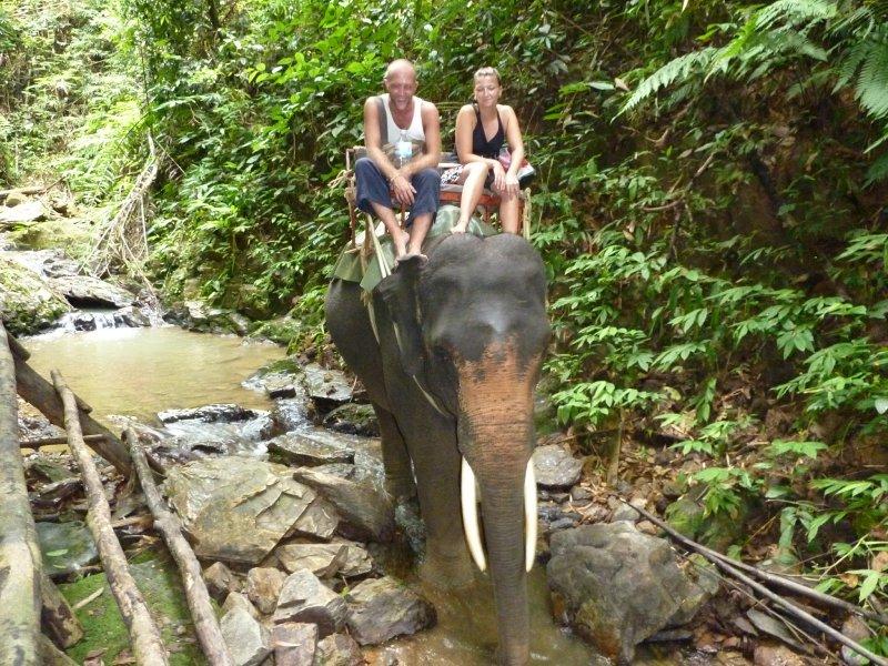 Khao Sok National Park Elephant Trekk