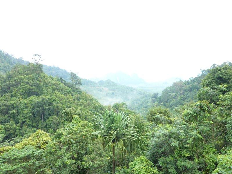 Khao Sok National Park Viewpoint