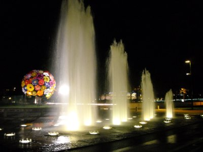 Water Fountain in Lyon