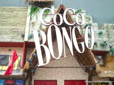 Disco Coco Bongo
