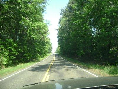 Louisiana_drive_003.jpg