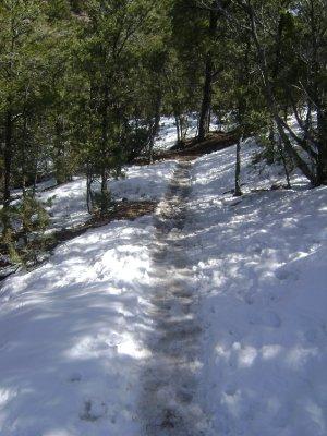 My_Santa_F..e_trail.jpg
