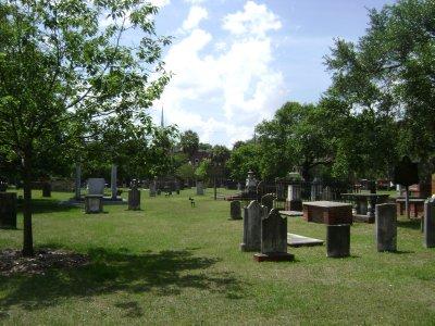 Texas_Loui..ppi_965.jpg