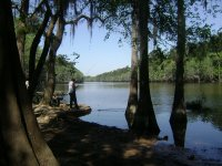 Caddo_Lake_LA_008.jpg