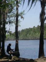 Caddo_Lake_LA_016.jpg