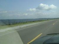 Texas_Loui..ppi_823.jpg