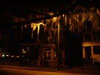Texas_Loui..ppi_995.jpg