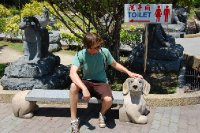 75 foot buddah statues, and dog bench.