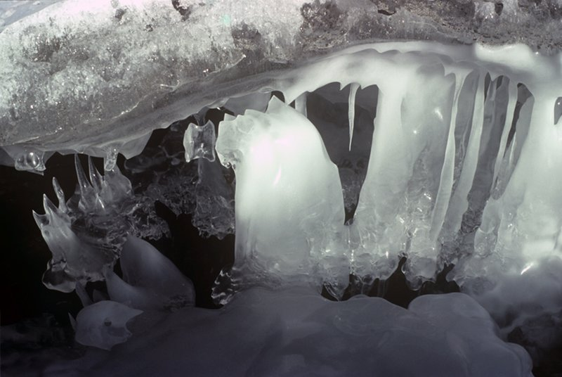 Icicles on the surface of a frozen river