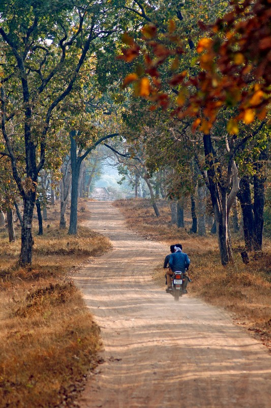 pradeepchamaria_bikers on the road_Jamni village area, tadoba