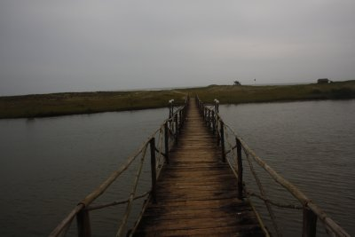 30.0. Bamboo bridge approach mandrem Beach
