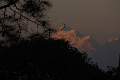 Uttaranchal and Home 118