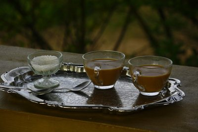 Coffee Country - Coorg...