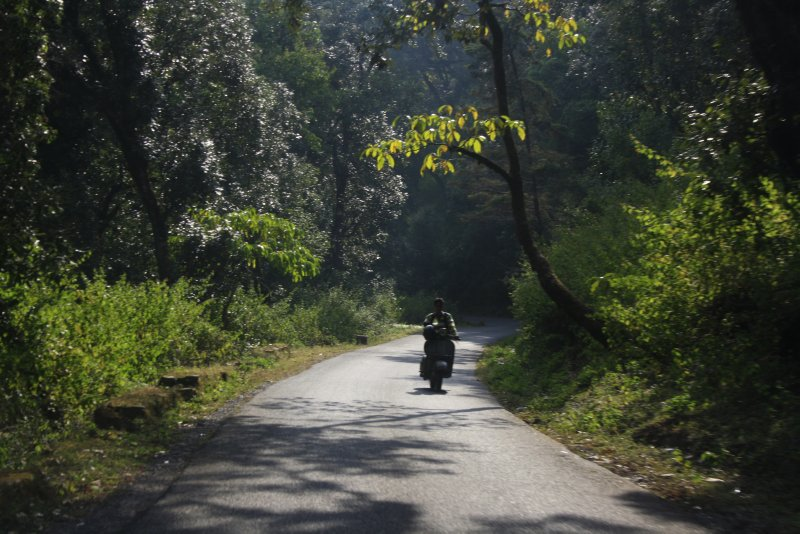 large_Ranikhet__.._Nov_13_365.jpg