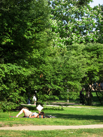 Afternoon at Vondel Park