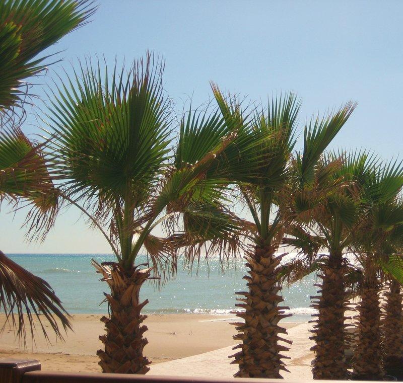 Spiaggia in Selinunte