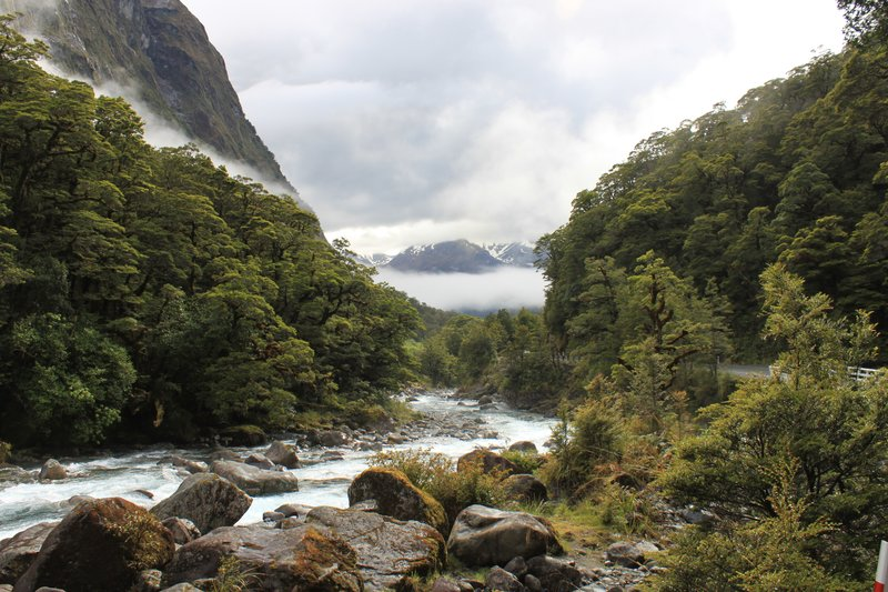 Valley on Milford Road