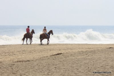 Horse riding in S Mexico