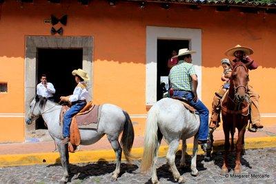 IMG_0555_-.._horses.jpg