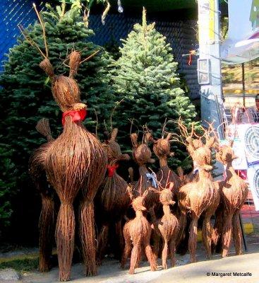 IMG_0662_-_Reindeer.jpg